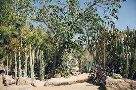 Moorten Botanical Garden in Palm Springs California — Haarkon