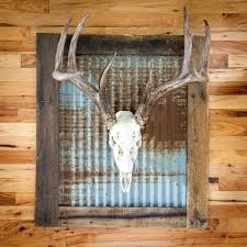 Whitetail Deer Decor Best Mount Ideas On Mounts Whitened Skull With Rustic Tin Wall Frame Includes