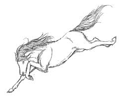 Realistic Horse Coloring Pages Rodeo
