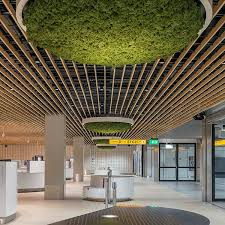 Rulon Wood Grille Ceiling by 44 Best Acoustical Ceiling Images On Pinterest Ceilings