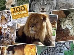 52 au zoo fauverie du mont faron avec 2 places adulte et 2 places