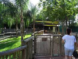General View of Walkabout Way at Busch Gardens Tampa