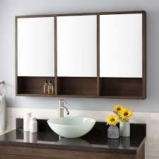 Medicine Cabinets Rustic Bathroom Vintage Style Long Rectangular Vanity Mirror