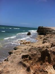 bathtub reef beach google search florida the land that i love