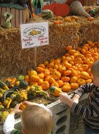 Pumpkin Patch Milwaukee by Pumpkin Patches In Maryland And Northern Virginia 2017