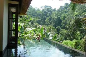 100 Ubud Hanging Gardens Resort Hotel Photos That Will Make You Want