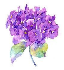 Watercolour Painting Purple Hydrangea Handmade Wall Art Flower