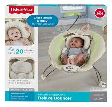 Mr Wilsons Cabinet Of Wonder Pdf by Amazon Com Fisher Price Deluxe Bouncer My Little Snugabunny