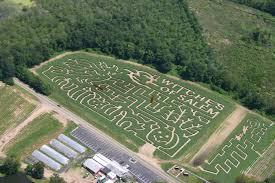 Halloween Farms In Illinois by Connors Farm Danvers Ma Corn Maze Salem Massachusetts