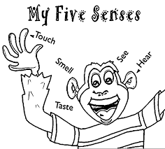 Five Senses Coloring Pages And 5