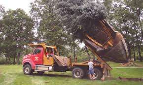 Commercial & Residential Tree Relocation/Moving Services - Advanced ... 1977 Chevrolet 30 Pickup Truck With Tree Spade Item Dc1943 Cci Tree Movers Service Moving Relocating Service Using Mechanical Planter Pin By Jamber Pie On Wyosobniarka Witolda Pinterest Youtube Baumalight Nomad Spades 1998 Mack Dm690s Big John Dd768 1996 Intertional 4700 Vmeer Four More Favorite Northern Virginia Shade Trees Surrounds 1956 6409 Dv9014 So Eagle Ridge Large Sales Delivery Railroad Ties