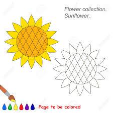 Coloriage Tournesol à Imprimer Sur COLORIAGES Info