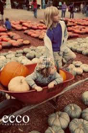 Christ United Methodist Pumpkin Patch Mobile Al by Fall Family Activities For Alpharetta And Surrounding Communities