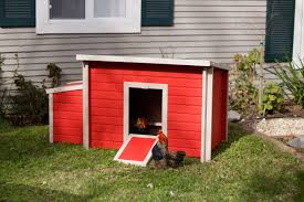 EcoFLEX Fontana Chicken Barn - Now In 2 Sizes And 2 Colors! - New ... New Custom Barn Style Cedar Dog House Ac Heated Insulated Boarding Photolog Amazoncom Prevue 465 Red Chicken Coop Garden Outdoor The Vaccines Barn Dogs Need Horse Owners Resource Diy Door Pet Condo Sheepy Hollow Farm Age Ecoflex Jumbo Fontana Echk503b Rural King Status Playtime Youtube Badrap Blog A View From The Inside Traing