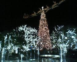 Christmas Tree Farms Los Angeles