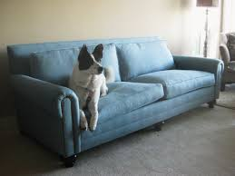 Camelback Slipcovered Sofa Restoration Hardware by Couch Seattle Custom To The Inch Seating At Non Custom Pricing