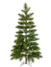 Types Of Live Christmas Trees by Majestic Pine Tree Balsam Hill
