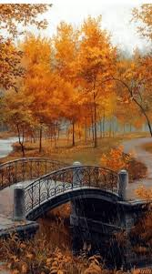 Stoney Ridge Pumpkin Patch Bellingham Wa by 69 Best Seasons Images On Pinterest Landscapes Nature And Places