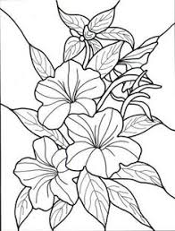 Exotic Flower Coloring Pages Hawaiian Colouring Page