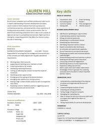 Business Development Manager CV Template Managers Resume Marketing Job Application Revenue Teacher