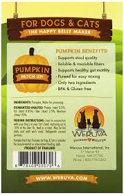 Pumpkin Causes Dog Diarrhea by Amazon Com Weruva Pumpkin Patch Up Pumpkin Puree Pet Food