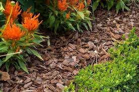 Mulch What It Means How It s Used in Landscaping