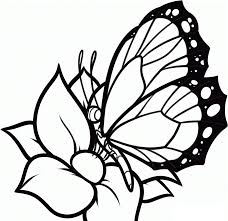 Line Drawings Free Coloring Pages Flowers And Butterflies