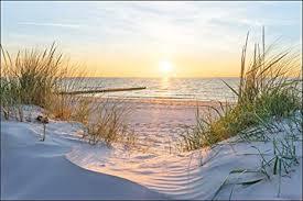 muralo fototapete strand 270 x 405 cm vlies tapete wandtapete dünen meer sonne himmel wohnzimmer schlafzimmer moderne wandbilder natur panorama