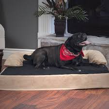 Kirkland Dog Beds by Amazon Com Petmaker Orthopedic Memory Foam Pet Bed With Bolster
