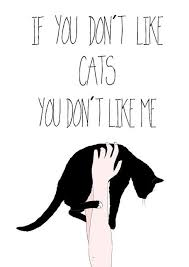 cat quotes never trust a who doesn t like cats o m g if you don t trust