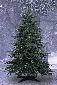 Barcana Christmas Trees by Amazon Com Barcana 7 1 2 Foot Star Fir Pe Pvc Ready Trim