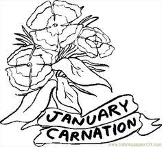 01 January Carnation 1 Coloring Page