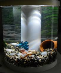top fin bettaflo soothe 3 5 gallons just bought this today will be