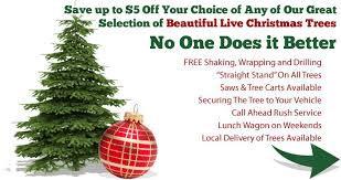 Christmas Tree Hill Shops York Pa by Central South Pennsylvania Christmas Tree Farms Choose And Cut
