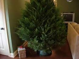 Xmas Tree Waterer by How To Make A Christmas Tree Watering Device Youtube