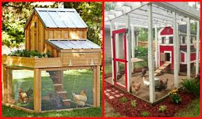 Diy Backyard Chicken Coop Plans | Chicken Coop Ideas T200 Chicken Coop Tractor Plans Free How Diy Backyard Ideas Design And L102 Coop Plans Free To Build A Chicken Large Planshow 10 Hens 13 Designs For Keeping 4 6 Chickens Runs Coops Yards And Farming Diy Best Made Pinterest Home Garden News S101 Small Pictures With Should I Paint Inside