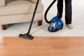 Bissell Hardwood Floor Cleaners by Amazon Com Bissell Zing Rewind Bagless Canister Vacuum