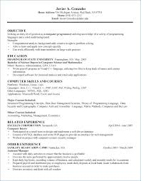 Puter Science Resume Website Examples And