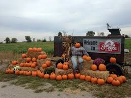 Pumpkin Patch Houston Tx Area by The 10 Best Pumpkin Patches In Indiana To Visit In 2016