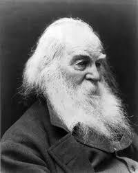 The Wound Dresser Walt Whitman Wiki goto image results for