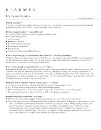 Sales Team Leader Cv Sample Resume Example Manager Examples Of Resumes Retail Cover Letter Medium To Large Size T