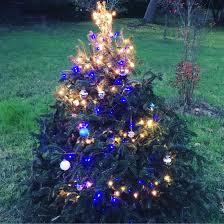 Elgin Christmas Tree Farm Elgin Tx by Instagram Manton Reece