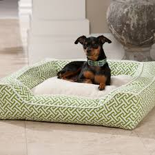 Bolster Dog Bed by Dfs Designer Pet Collection Square Bed Dog Beds At Drsfostersmith Com