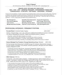 Perfect Resume Summary Unforgettable Customer Service Representative Examples