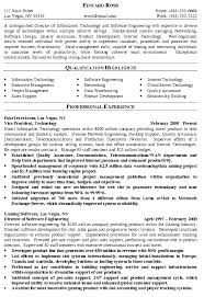 Director Of It Resume Example