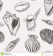 100 Sea Shell Design Shell Pattern 4 Stock Vector Illustration Of Life 31697481
