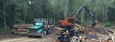 100 Used Log Trucks For Sale Newlons International Elkins WV One Stop For Parts Sales And