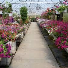 Petitti Garden Centers Home Decor 8000 Plaza Blvd Mentor OH