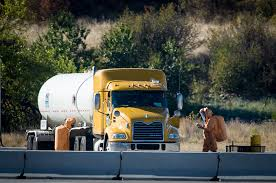 Leaking Truck Forces Long I-90 Shutdown | The Spokesman-Review Leaking Truck Forces Long I90 Shutdown The Spokesmanreview Hey Smokey Why Are Those Big Trucks Ignoring The Weigh Stations Weigh Station Protocol For Rvs Motorhomes 2 Go Rv Blog Iia7 Developer Projects Mobility Improvements Completed By Are Njs Ever Open Ask Commutinglarry Njcom Truckers Using Highway 97 On Rise News Heraldandnewscom American Truck Simulator Station Youtube A New Way To Pay State Highways Guest Columnists Stltodaycom Garbage 1 Of 10 Stock Video Footage Videoblocks Filei75 Nb Marion County Station2jpg Wikimedia Commons Arizona Weight Watchers In Actionweigh Stationdot Scale Housei Roadquill