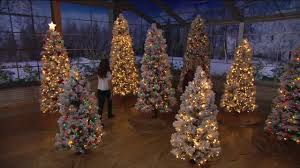 Snow Flocked Slim Christmas Tree by Kringle Express Flocked Winter Slim Christmas Tree On Qvc Youtube